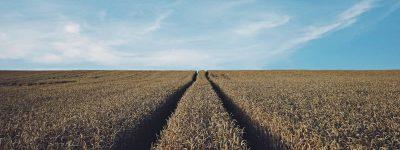 farm-crop-insurance-red-bluff-ca
